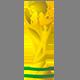 icona palmares coppa del mondo worldcup